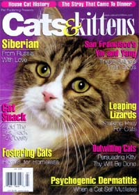 Cats & Kittens Magazine